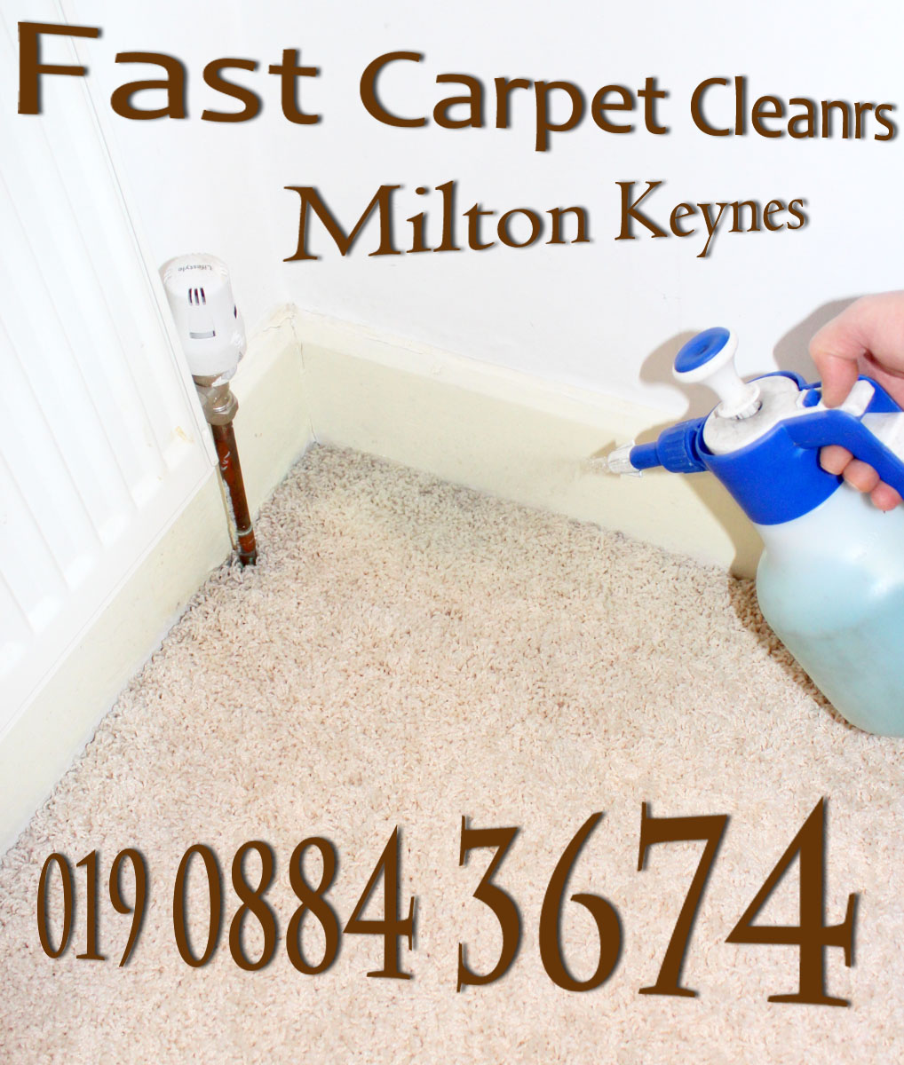 Fast Carpet Cleaners logo