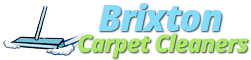 Brixton Cleaning Services logo