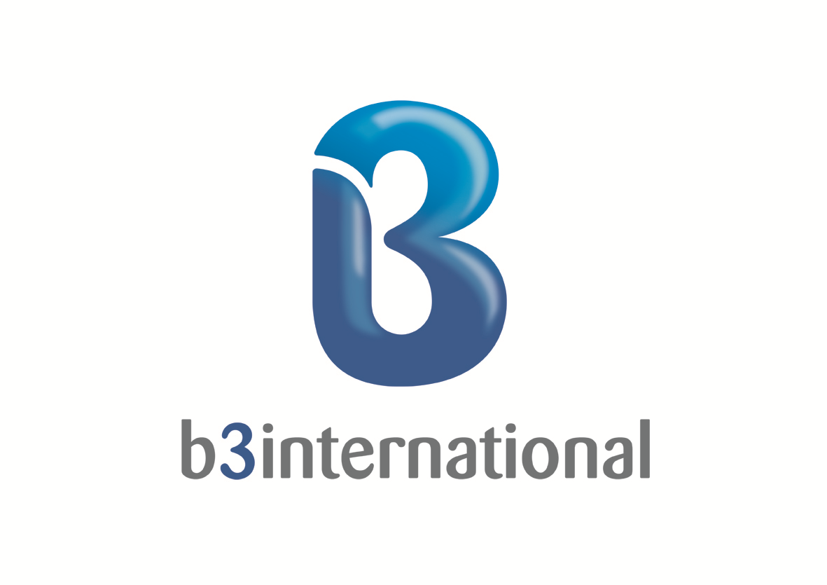 B3 International Ltd logo