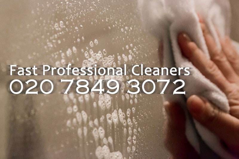 Fast Professional Cleaners logo